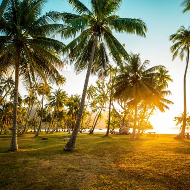 Ta'ahiamanu Beach 005