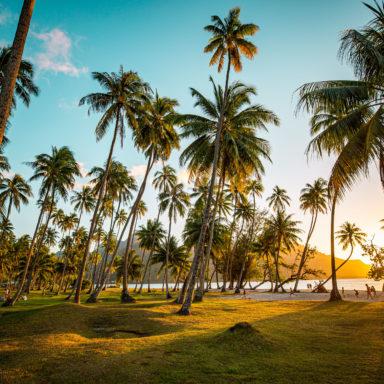 Ta'ahiamanu Beach 008