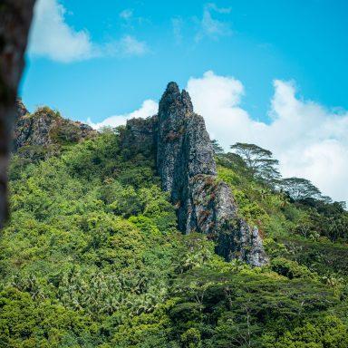 Tour en 4X4 Safari sur l'île de Moorea 004