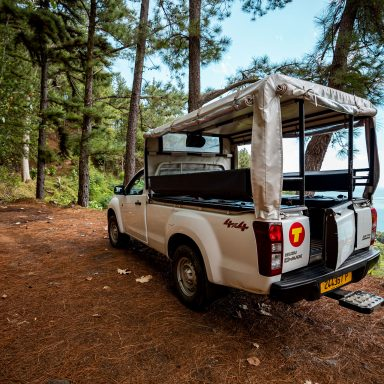 Tour en 4X4 Safari sur l'île de Moorea 008
